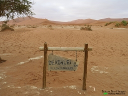 Deadvlei sign