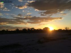 Sunset at Halali