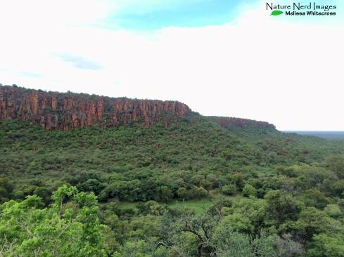 The Waterberg plateau