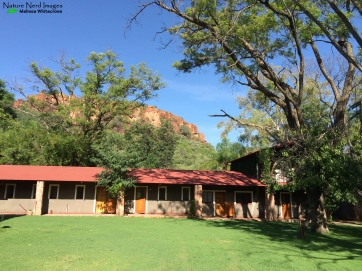 Our lodge in the Waterberg