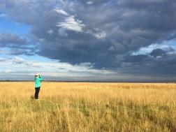 Birding in the Vlaklaagte grasslands