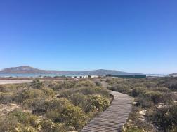 The board walk at West Coast