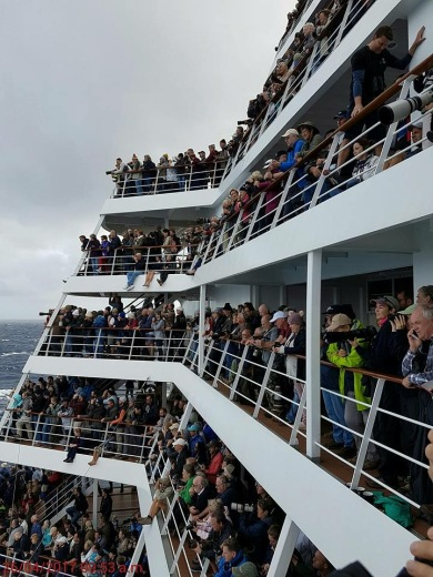 Birders crowding the decks