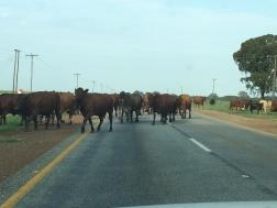A N7 roadblock!