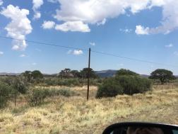 Typical Kalahari vegetation along the N7