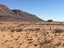 Typical landscape along the Aggenys to Pofadder dirt road