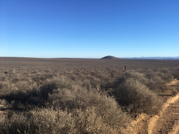 Some better looking Karoo